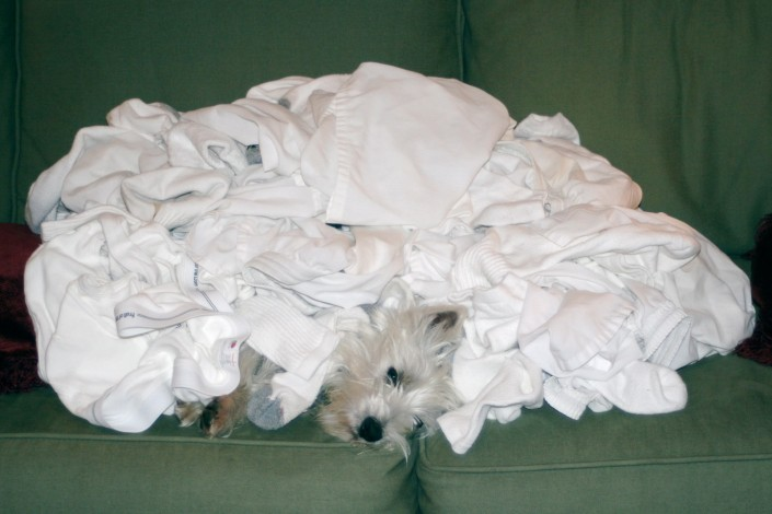 Buried under laundry